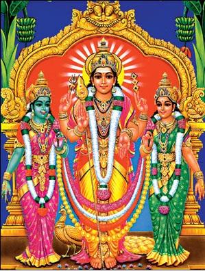 Valli Teyvanai Samedha Sri Murugan