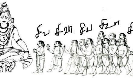 நவப்புலியூர்  யாத்திரை
